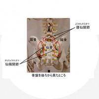 豊田市のTCM鍼灸院は通常の鍼灸院では提供していない特殊整体治療も併用しています